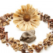 Stock Photo: Stone with potpourri