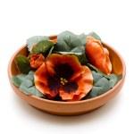 Flower Arrangement — Stock Photo