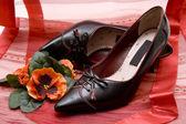 Ladies shoe — Stock Photo