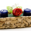 Wax candle with roses — Stock Photo