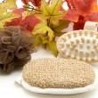 Stock Photo: Massage sponge and brush