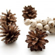Stock Photo: Fir Cone