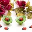 Flower Arrangement with ladybirds — Stock Photo