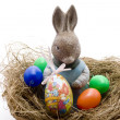 Stock Photo: Easter bunnies woman