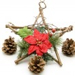 Christmas flower - Stock Photo