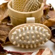 Massage brush and autumn foliage — Stock Photo