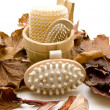 Stock Photo: Massage brush and autumn foliage