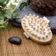 Massage brush and towelling cloth — Stock Photo #15619245