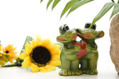 Frog pair with heart — Stock Photo