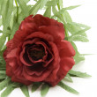 Red rose and garland — Stock Photo