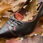 Ladies shoes — Stock Photo