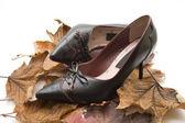 Ladies shoe with loop — Stock Photo