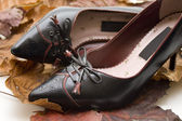 Ladies shoes — Stock fotografie