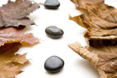 Autumn leaves with stones — Stock Photo