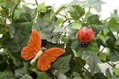 蝶と甲虫 — ストック写真