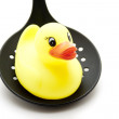 Bath duck on skimmer — Stock Photo