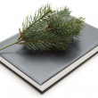Fir branch with book — Stock Photo