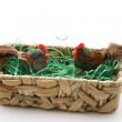Cock and hen in the basket — Stock Photo