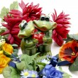 Frogs with heart — Stock Photo