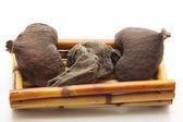 Nutshells with wooden root — Stock Photo