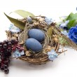 Bird nest with eggs — Stock Photo