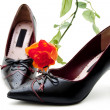 Ladies shoes with rose — Stock Photo