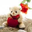 Stock Photo: Teddy bear with heart