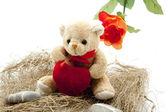 Teddy bear with heart — Stock Photo