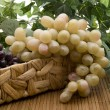 Wine grapes in phloem basket — Stock Photo #17451523