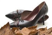 Ladies shoes with autumn foliage — Stock Photo