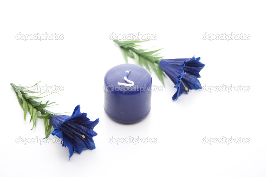 Wax candle with flower branch  Stock Photo #17451393