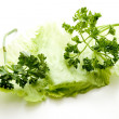 Iceberg salad with parsley — Stock Photo
