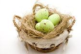 Saman yuvadaki yumurta — Stockfoto