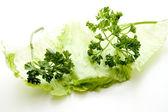 Iceberg salad with parsley — Stock Photo