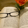 Reading glasses — Stock Photo #17820453
