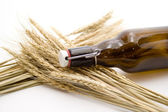 Beer bottle with wheat ear — Stock Photo