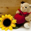 Teddy bear with heart — Stock Photo