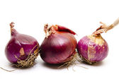 Fresh red onions — Stock Photo