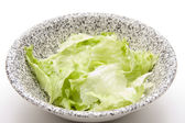 Fresh Iceberg salad — Stock Photo