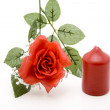 Wax candle with rose branch — Stock Photo #19247521