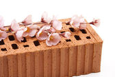 Brick stone with flowering branch — Stock Photo