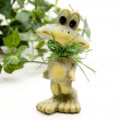 Frog with green ivy plant — Stock Photo