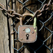 Old padlock with chain — Stock Photo