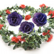 Rose blossoms with garland — Stock Photo