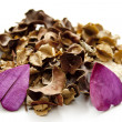 Stock Photo: Potpourri with flower blossom