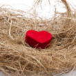 Red heart in the hay nest  — Stock Photo