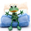 Frog with washcloth — Stock Photo