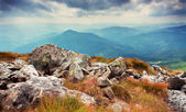 Hoverla mountain — Stock Photo