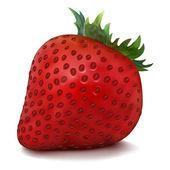 Vector Strawberry — Stock Vector