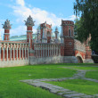 Stock Photo: Figured bridge in Tsaritsyno. Moscow.